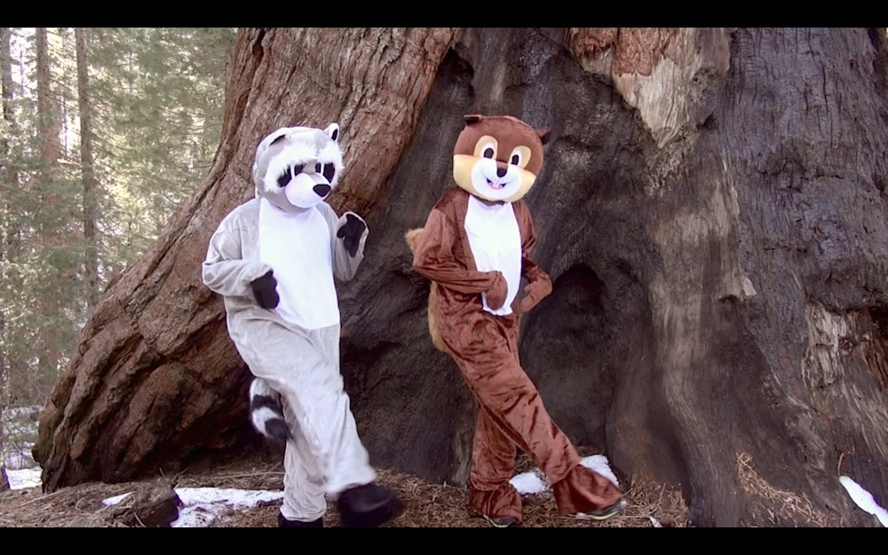 Folkstar's Into the Trees Screen Shot